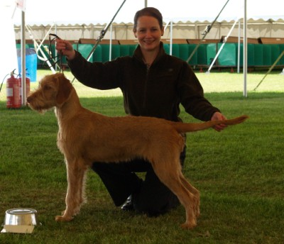 Breha 2nd place Puppy
